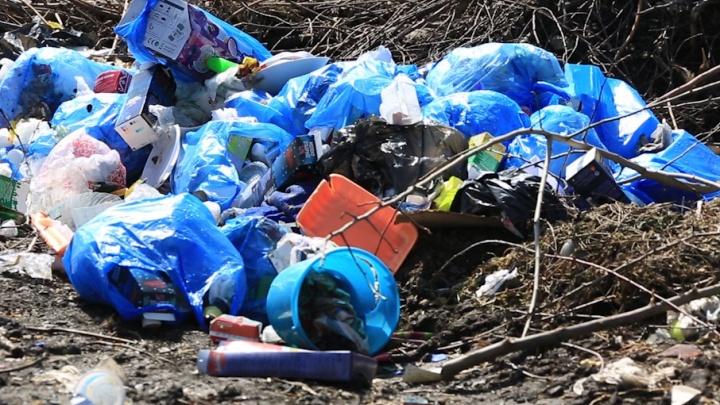 Прокуратура заставит убрать мусор в Белозерском районе через суд