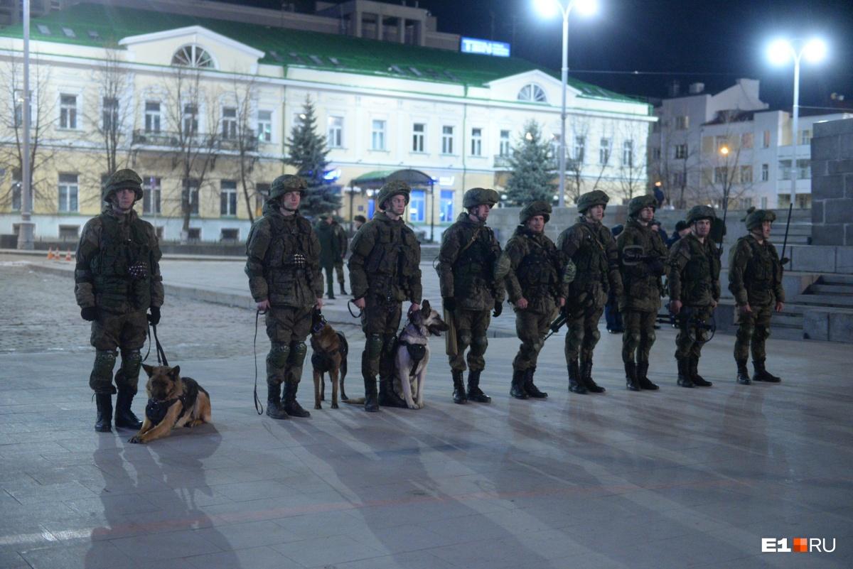Не обошлось без военных собак
