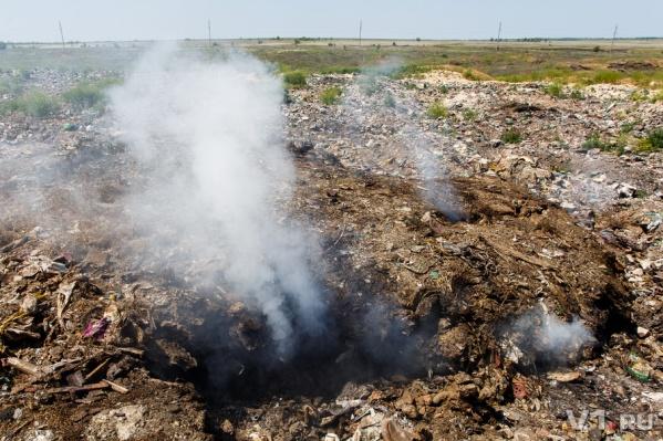 Все пробы, которые взяли волгоградские экологи, не превысили допустимых норм