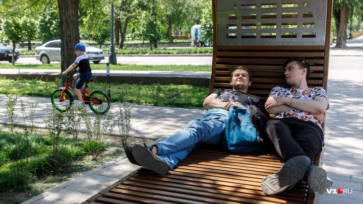 День молока, фестиваль субкультур и фотосеты: программа праздничных выходных в Волгограде