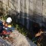 Бетонная ловушка: В Уфе спасатели освободили лосиху попавшую в западню