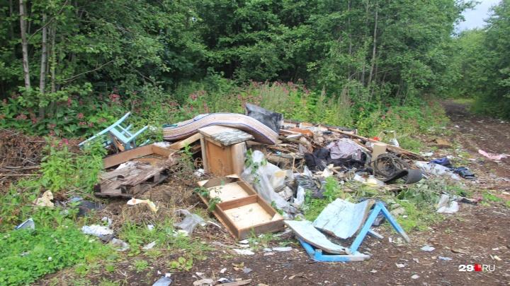75 тонн за 150 тысяч рублей: до конца года с Маймаксанского кладбища вывезут мусор