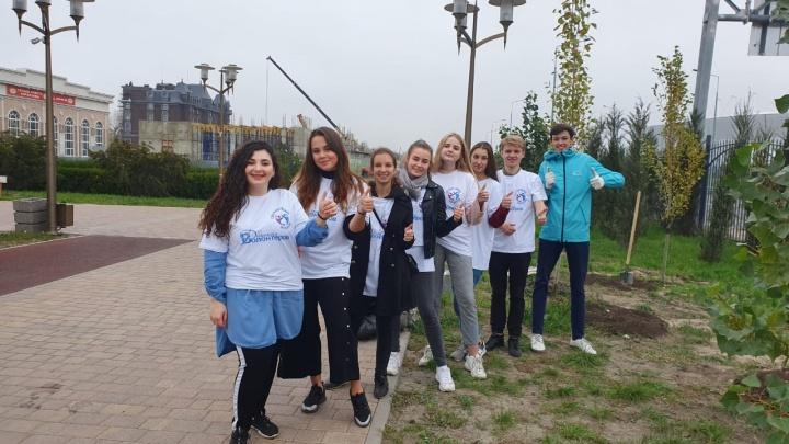 Волонтеры Союза общественных инициатив высадили деревья