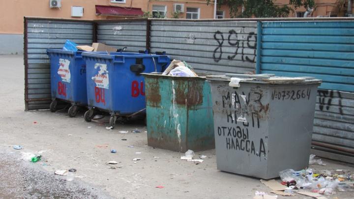 Тариф на утилизацию мусора по новой схеме в Зауралье объявят после 20 декабря
