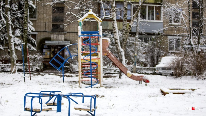 Бьёт по голове, когда открывают дверь: в Ярославле серийный грабитель нападает на пенсионерок