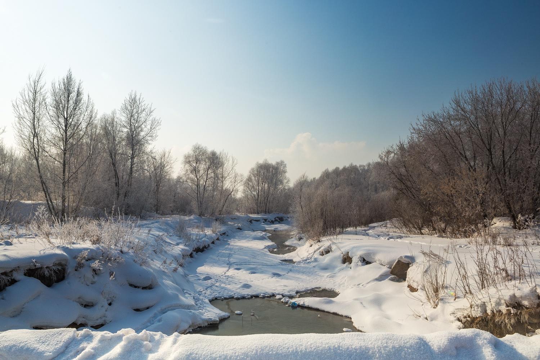Частный сектор на берегах одной из Ельцовок должен заменить большой сквер, но пока в реку выливают помои и скидывают мусор