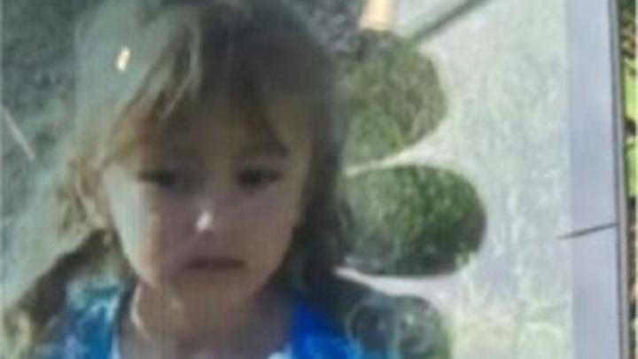 Собаки не смогли взять след: что известно об исчезновении Зарины Авгоновой на 17:00