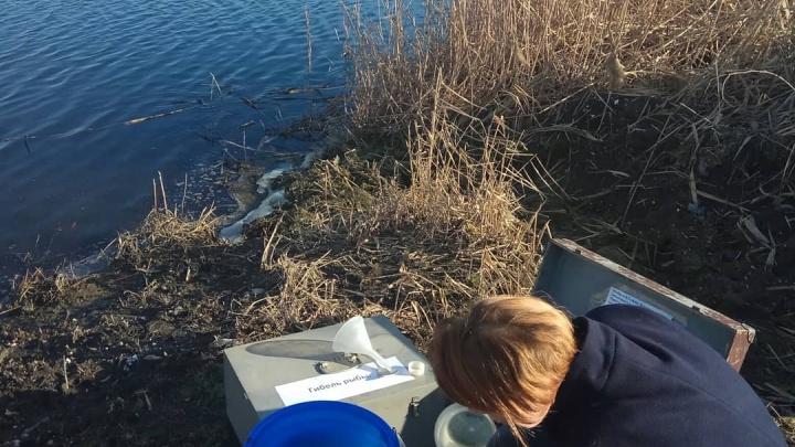 В реке в черте Новочеркасска содержание марганца превысило норму в 55 раз