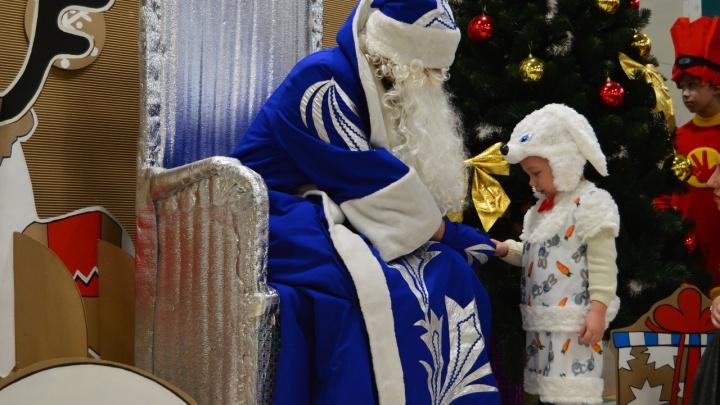 Волшебная палочка,3D-ручка и собаки: топ-8 подарков, которые заказали курганские дети Деду Морозу