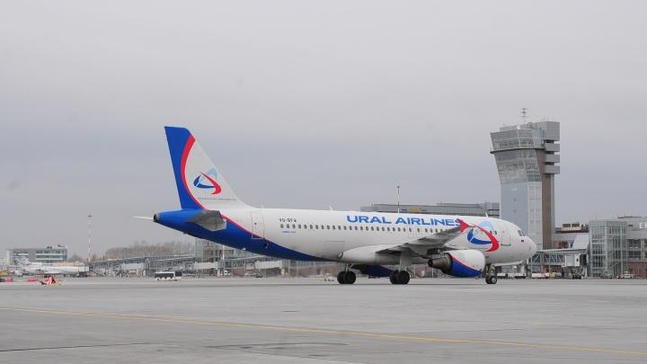 В «Уральских авиалиниях» опровергли, что их самолет экстренно приземлился в Москве