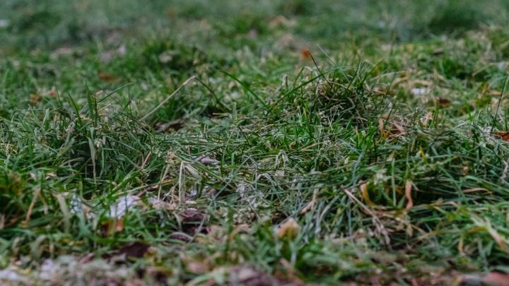 В Перми температура воздуха побила рекорд 60-летней давности