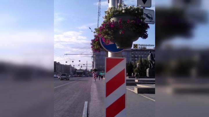 В центре Новосибирска дорожные знаки завесили вазонами с цветами