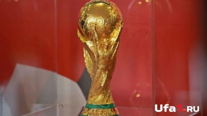 Футбольных фанатов из Башкирии бесплатно развезут по городам чемпионата