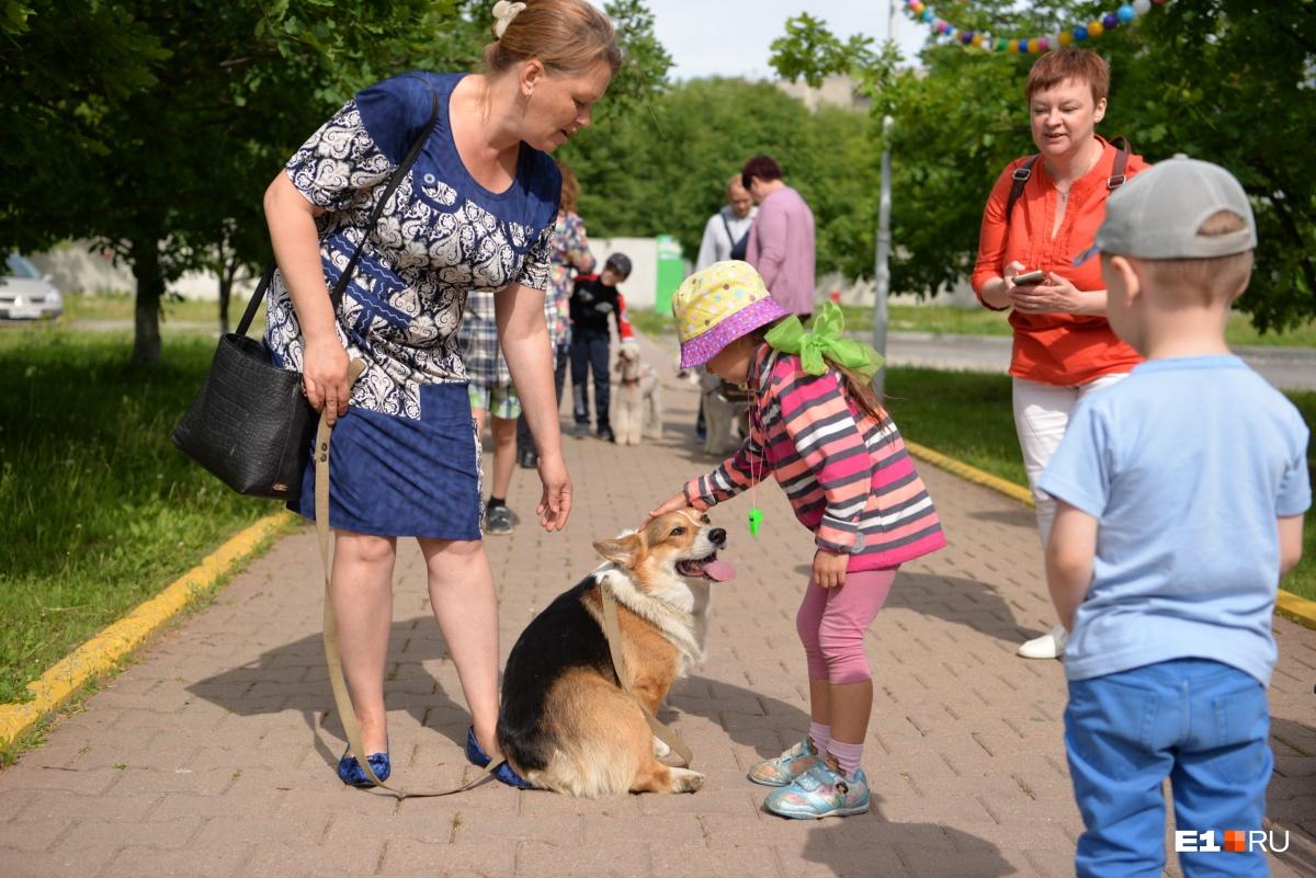 Животные спокойно контактировали с детьми