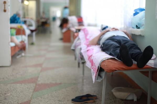Пожилой новосибирец заболел энцефалитом после прогулки в лесу Советского района