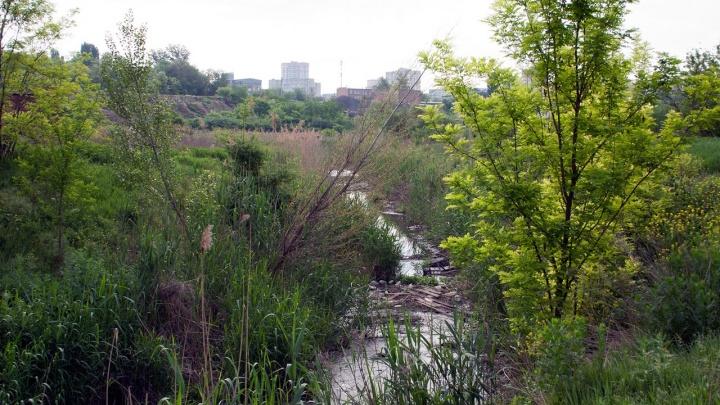Часть парка «Темерник» в Ростове откроют в 2020 году