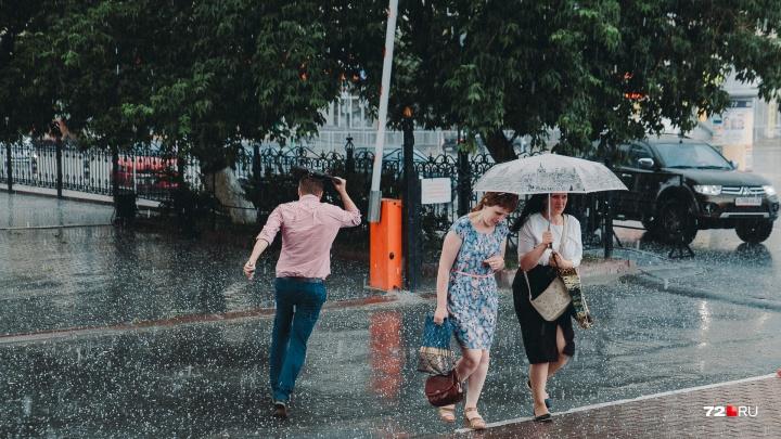 Готовьте зонтики и куртки. Синоптики рассказали, какой будет первая неделя июня в Тюмени