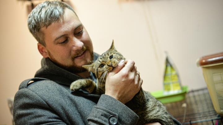 Дальнобойщик, который вылечил в Екатеринбурге котенка, сбитого в Башкирии, забрал его домой