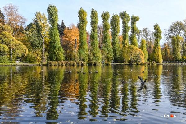 А вы любите осень?