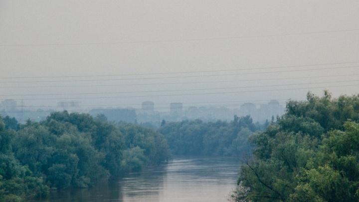Дым от лесных пожаров дошёл до Омска