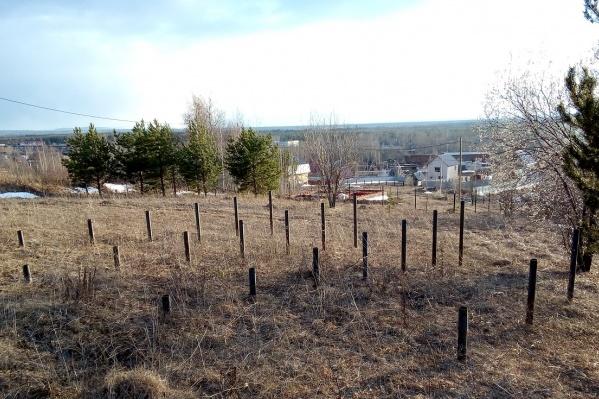 На этой земле должен был появиться дом семьи Даниленко, но строительная компания сделала только свайный фундамент