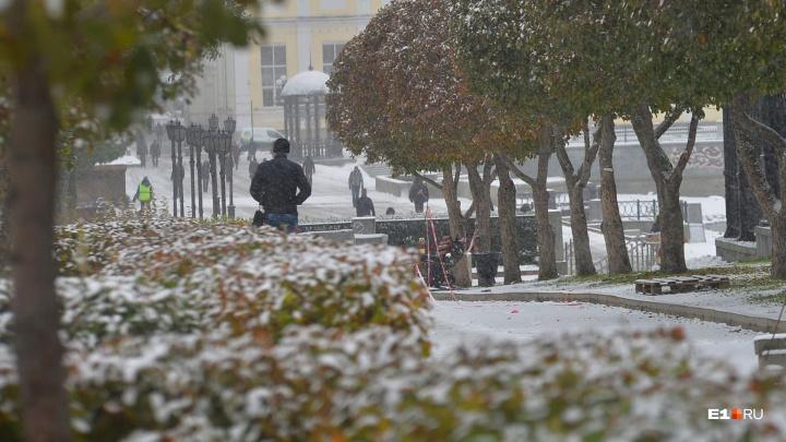 Осень, прощай: синоптики пообещали Екатеринбургу снег к концу недели
