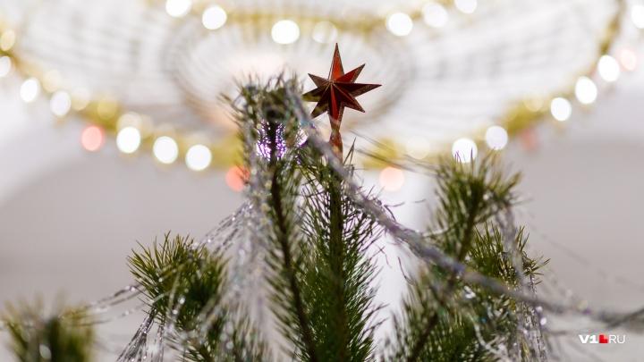 «И во время службы пошел снег»: Рождественская ночь в Усть-Медведицком монастыре превратилась в настоящую сказку