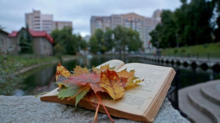 Осеннее ненастье, здравствуй: погода в Башкирии начнет ухудшаться