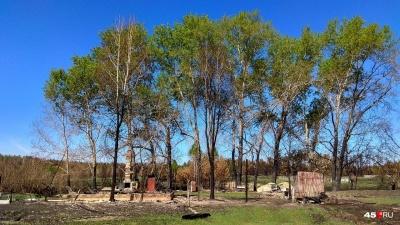 Шумков сообщил о нелицеприятных выводах по майским пожарам
