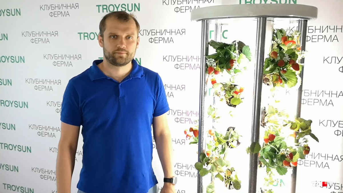 Желание круглый год есть клубнику у Алексея Ткаченко переросло в создание уникальной фермы