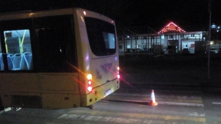«Резко ударил по тормозам»: на юге Волгограда водитель автобуса отправил в больницу двух женщин