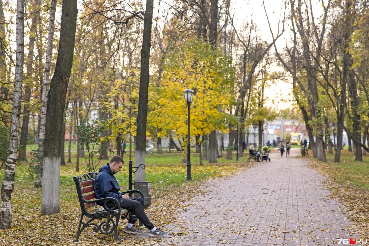 У самозанятых жителей Ярославской области пока налоги забирать не будут
