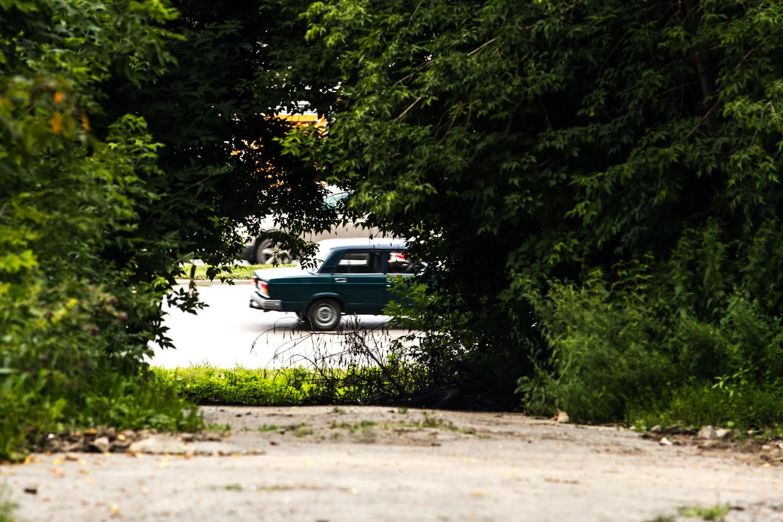 Совсем недалеко от пересечения новой дороги с ул. Тополёвой находится Ипподромская магистраль —её видно через просвет в деревьях