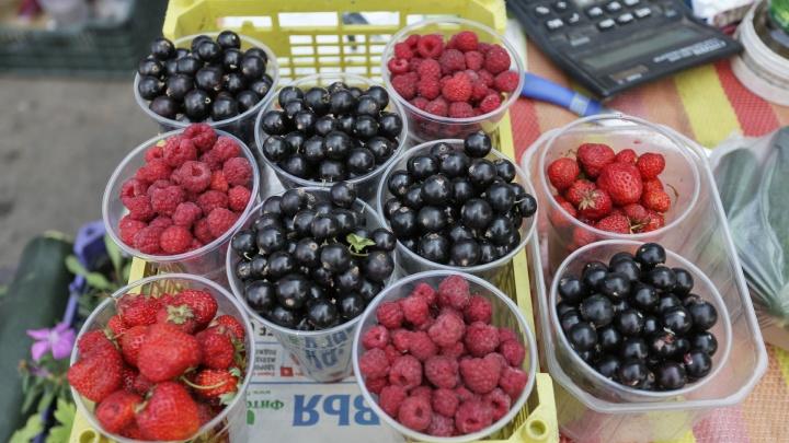 Клубничка от бабушки: рассказываем, где в Челябинске продают ягоды и сколько они стоят