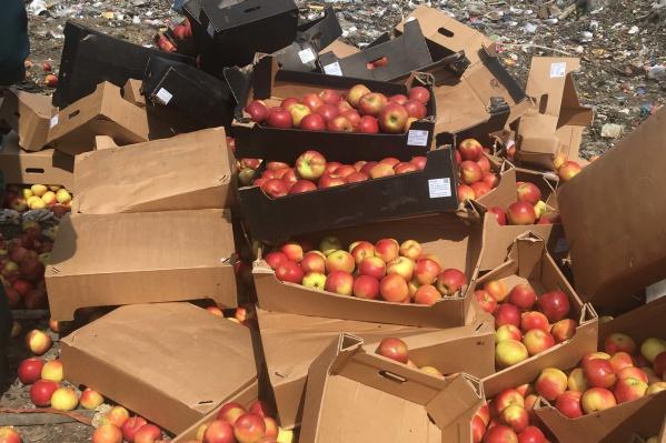 Яблоки уничтожили 17 июня