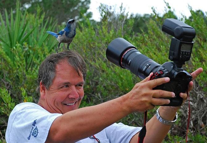 Сезон фотоохоты открыт: какую добычу ждать новосибирцам