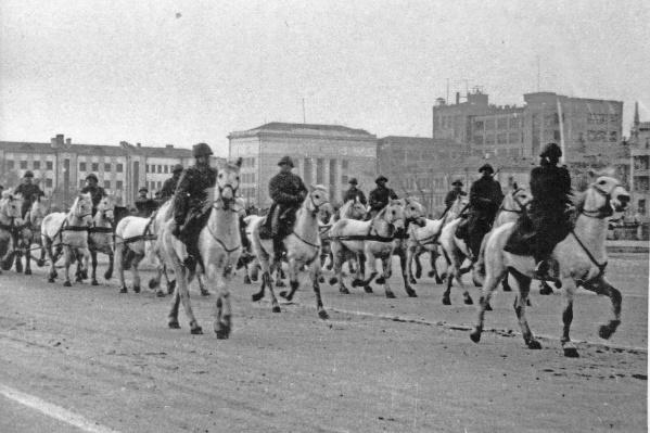 По площади Куйбышева прошли конные полки