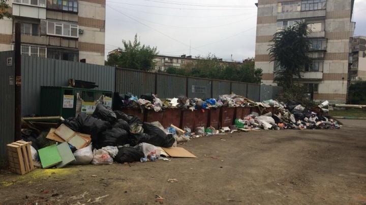 «Вывозим мусор круглосуточно»: какие районы Челябинска избавят от свалок во дворах в первую очередь