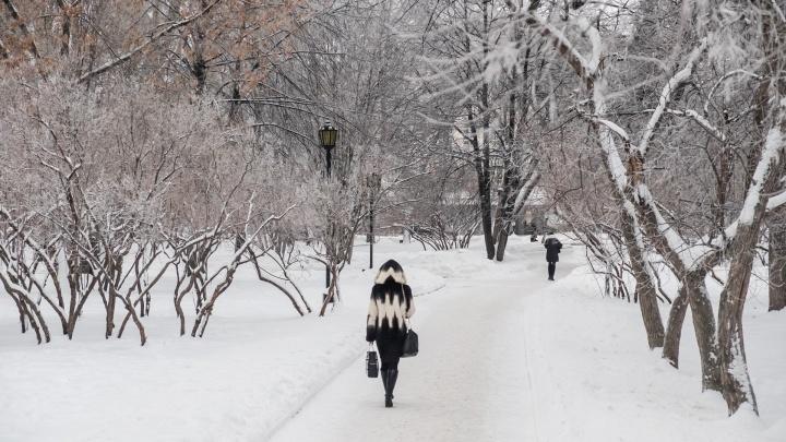 Холодно и ясно: рассказываем о погоде в Прикамье на выходные