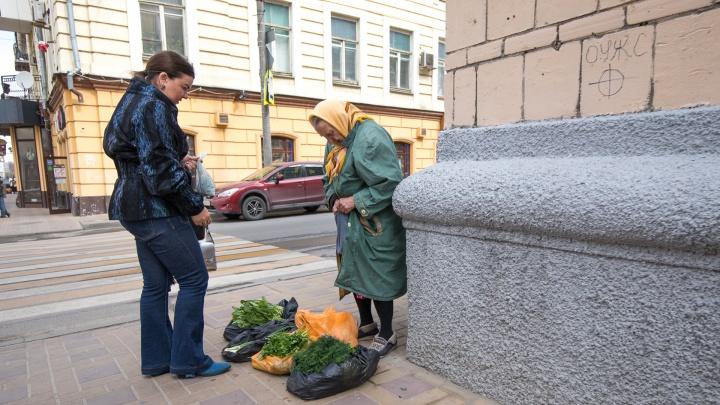 В Ростовской области две тысячи предпринимателей начали платить налог для самозанятых