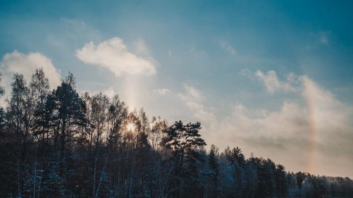 Дело о нападении на супружескую пару в лесу под Тюменью передали в суд