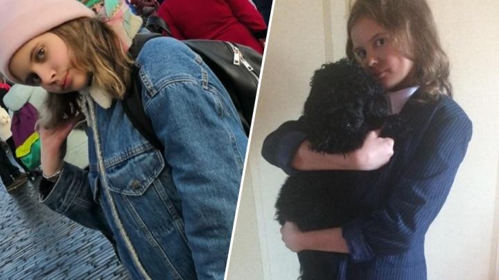 «Решать проблему нужно с людей»: школьница нашла способ сократить число бездомных собак