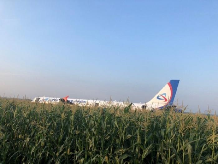 Самолет сел прямо в поле с невыпущенным шасси