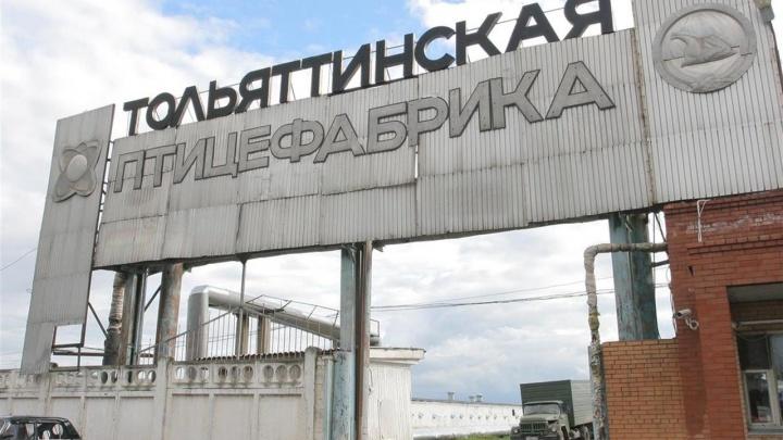 Своё, самарское: для тольяттинской птицефабрики нашли инвестора