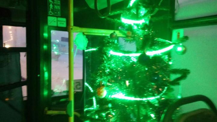 Кондуктор и водитель автобуса №52 украсили салон елкой и гирляндами