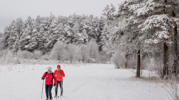 Ярославцев зовут на «Лыжню России — 2019»