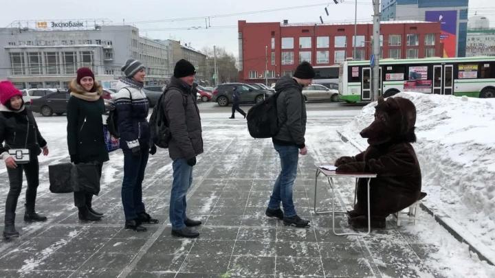 Новосибирец в костюме медведя уселся за стол на площади Ленина и выслушал горожан