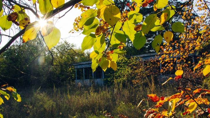 Какая осень в лагере имени Гагарина: гуляем по заброшенному уголку Чернолучья