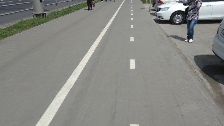 На тротуары вдоль Московского шоссе нанесли разметку для велосипедистов