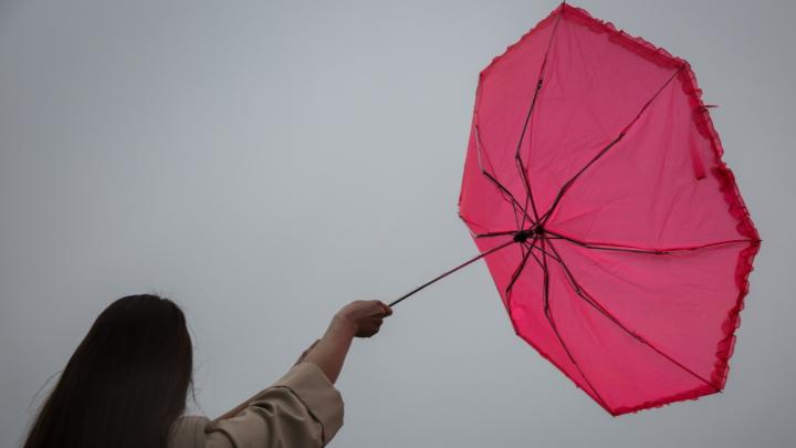 В МЧС предупредили омичей об усилении ветра